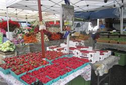 Forest Lakes Farmers Market